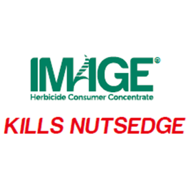 Image Kills Nutsedge Logo